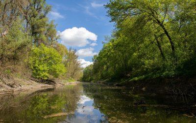 Megújult a Bezerédi-Duna-ág páratlan természeti környezete