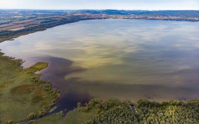 A fürdőzést is zavarhatja, hogy a Balaton északnyugati partjainál ismét algásodik a tó vize