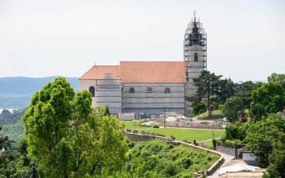 Ingyenes nyílt napot tartanak a Balaton élővilágáról Tihanyban