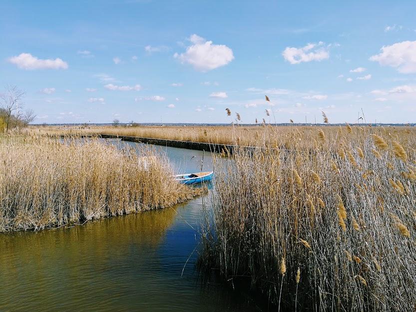 Extrém időjárás: Nagy bajban a Velencei-tó