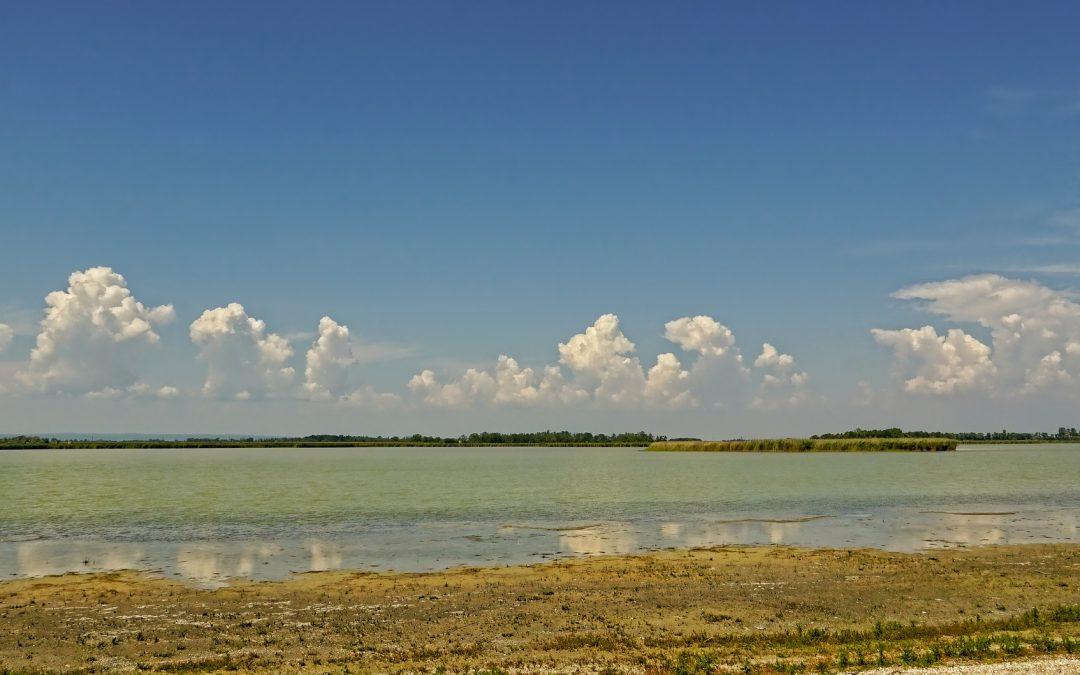 Burgenlandi tavak: Drámai helyzetben a Zicksee